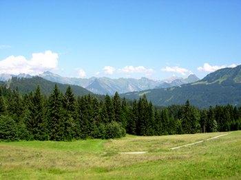 Berge-BerghofFelder.jpg