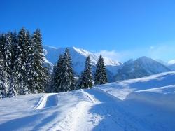 winter-spazierweg-langlauf-berge..jpg
